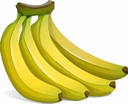 Banana Bunch Clipart Transparent