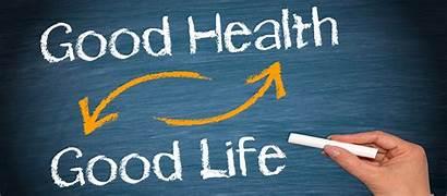 Health Mental Wellness Essay Value Lifestyle Nutrition