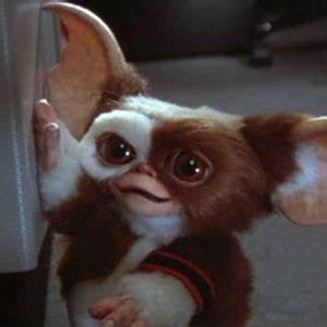32 best Gremlins images on Pinterest | Gremlins, Horror ...