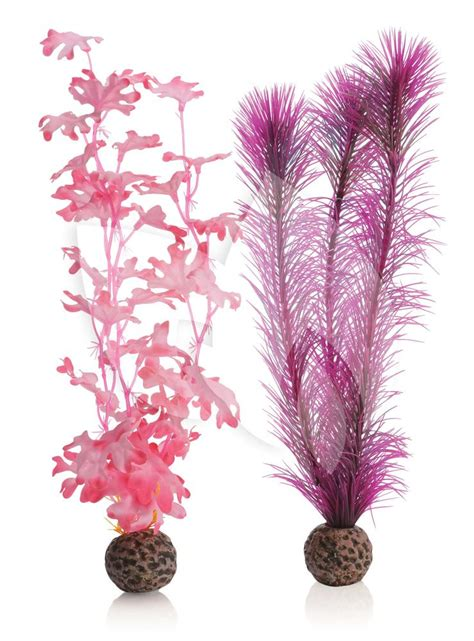 roze aquarium decoratie biorb zeewier set medium roze aquarium decoratie