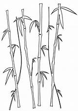 Bamboo Coloring Pages Print sketch template