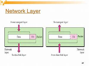 Osi Network Layer Gallery