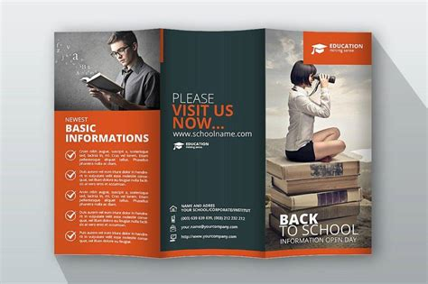 education trifold brochure examples psd ai apple