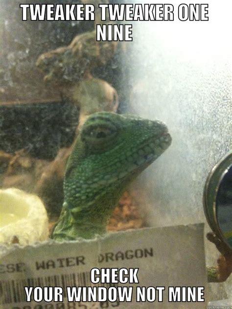Tweaker Memes - leery lizard memes quickmeme