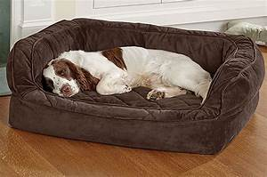 10 best beds for dozy dogs With best dog bed for two dogs