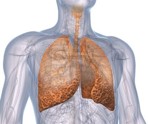lungenfibrose zm