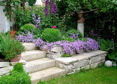 Bildergalerie Gartenpflanzen  Terrasse Garten Sichtschutz