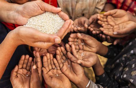 world hunger  increasing food
