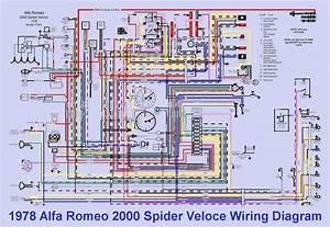 1978 Alfa Romeo 2000 Spider Veloce Wiring Diagram