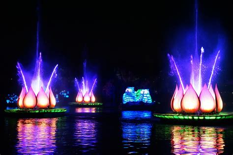 Disney Light Show by Rivers Of Light Show At Disney Animal Kingdom I Run For Wine