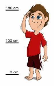 Gymnastikball Größe Berechnen : ballgr e berechnen gymnastikball pezziball sitzball ~ Themetempest.com Abrechnung