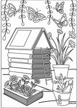 Coloring Pages Backyard Adult Landscaping Grown Ups Garden Info Books Patio Tropical Pdf Colouring Sellfy Flowers sketch template