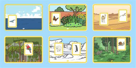 animals   habitats matching activity animals