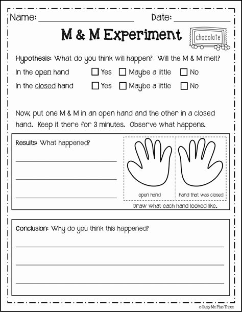 second grade science worksheets search worksheets second grade science first grade