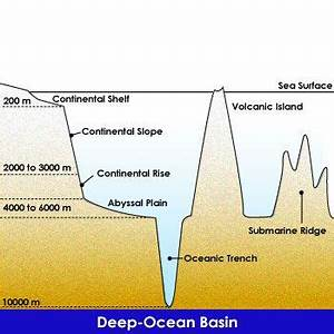 23 best images about science printable worksheets for How did scientists determine the age of the ocean floor