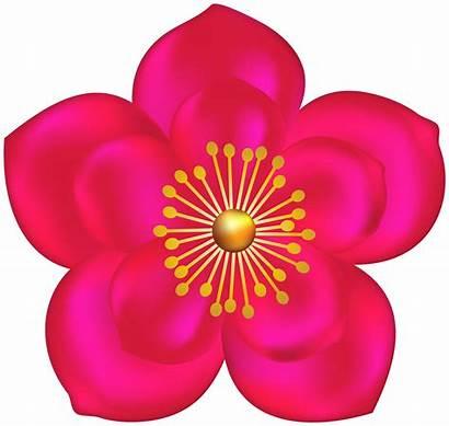 Transparent Flower Fuchsia Clipart Flowers Fuschia Yopriceville