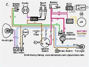 Shovelhead Wiring Diagram  U2013 Vivresaville Com