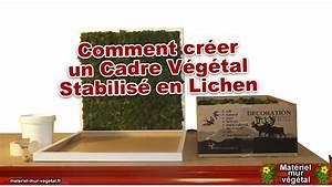 Créer Un Cadre Photo : comment cr er un cadre v g tal stabilis en lichen mat riel mur v g tal youtube ~ Melissatoandfro.com Idées de Décoration