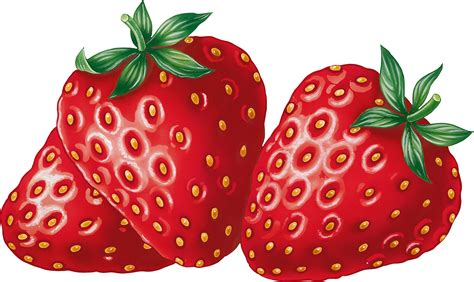 free clipart pictures best strawberry clipart 6609 clipartion