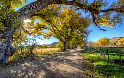 Country Road Landscape Trees Autumn Wallpapers13