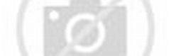 蔡淑臻俏變「紅包袋」 與王麗雅率伊林模特兒賀新年 - 中時電子報