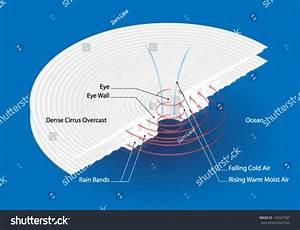 Cross Section Hurricane Labels Stock Vector 145347787