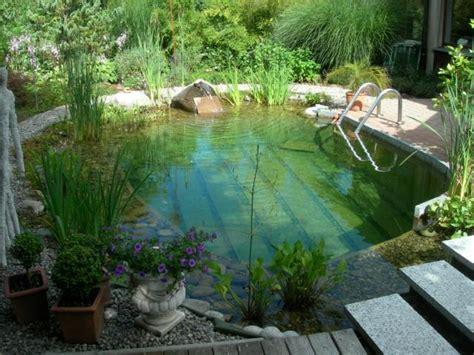 Schwimmteiche Für Kleine Gärten by Badeteich Mitte