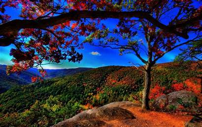 Fall Wallpapers Desktop Widescreen Resolution Android