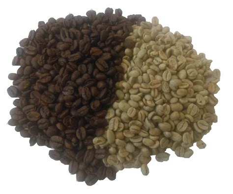 We deliver our finest possible green coffees to customers across kent, london and the rest of the uk. Direct Trade Green Coffee Beans