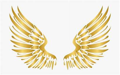 Wings Angel Vector Gold Luxury Transparent Golden