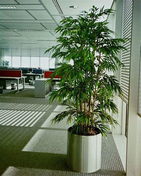 plantes pour bureau plante artificielle de faux végétaux plus vrais que