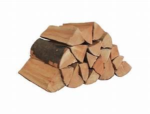 Brennholz Buche 25 Cm Kammergetrocknet : brennholz kaminholz buche 25 27 cm ~ Orissabook.com Haus und Dekorationen
