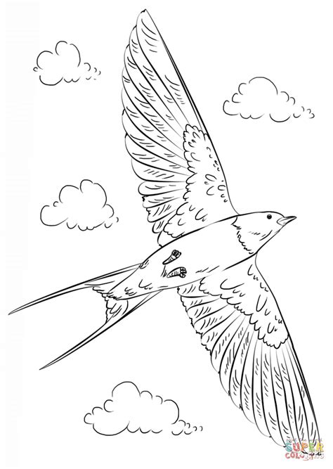 barn swallow  flight coloring page  printable coloring pages