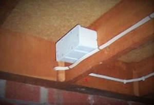 Produit Contre Les Termites : nemesis appat termite 2 sachets pour boitier en vente ici ~ Melissatoandfro.com Idées de Décoration