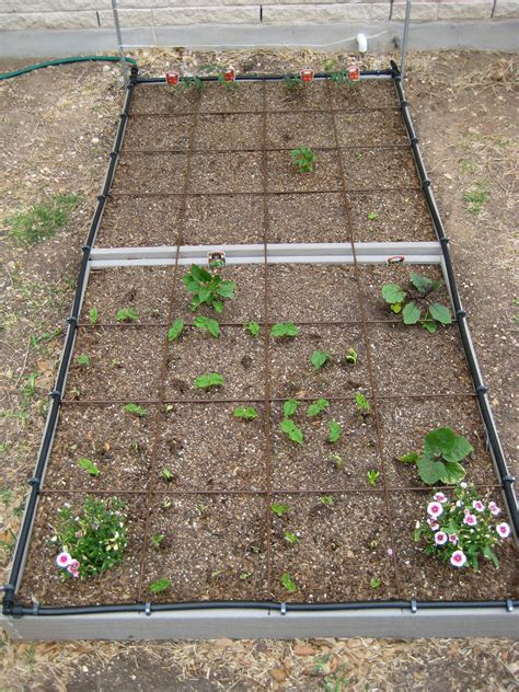 bed garden raised bed gardening the how do gardener