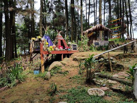 aktivitas pilihan  hutan pinus gunung pancar rubrik