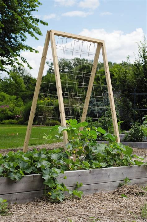 Garden Trellis by Twine Vegetable Garden Trellis Quot Frame Is Made From 1 3 8