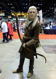 DIY Halloween Costumes Lord of the Rings