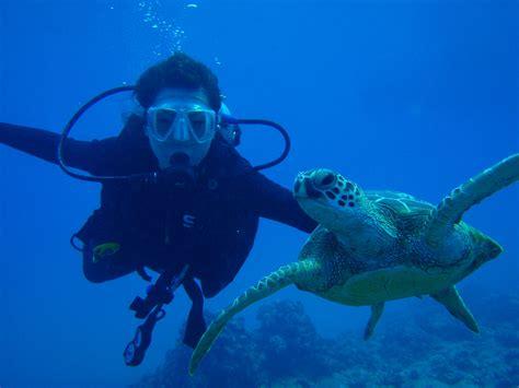 scuba diving in contact lensesdolphin dive center dolphin dive center