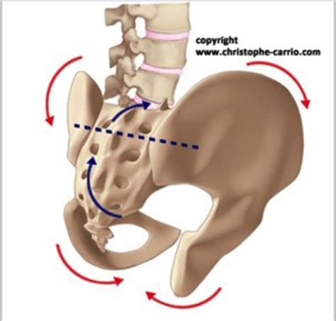 douleur sacrum position assise 28 images position assise douleur mal au dos genou coccyx 17