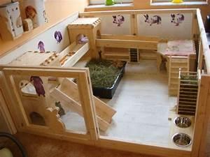Maison Pour Lapin : le lapin par oxbow conseils rongeurs animobouffe ~ Premium-room.com Idées de Décoration
