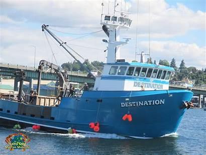 Destination Sea Salty Crabber Dog Ship Bering