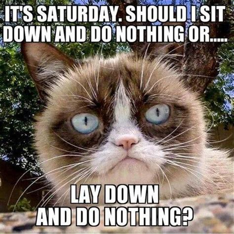 Saturday Memes Funny - best 25 saturday memes ideas on pinterest funny saturday memes work day humor and exhausted meme