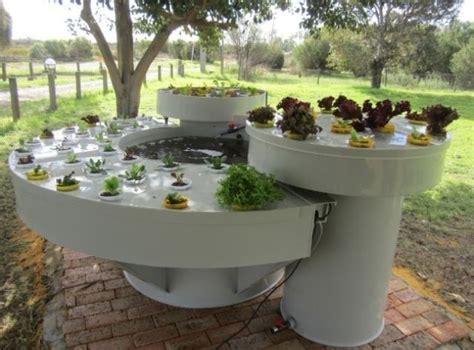 aquaponics aquaponics garden gardening aquaponic
