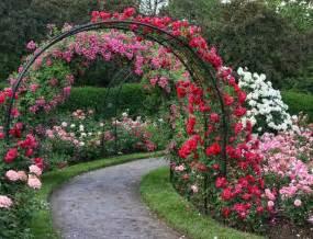 wedding backdrop design malaysia bem bom rosas trepadeiras