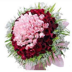 A Beautiful Bouquet Of 100 Red And Pink Roses - Myflowergift