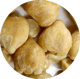 Review Minyak Kemiri Al Qodri kimiri candlenut hair the jamu shop