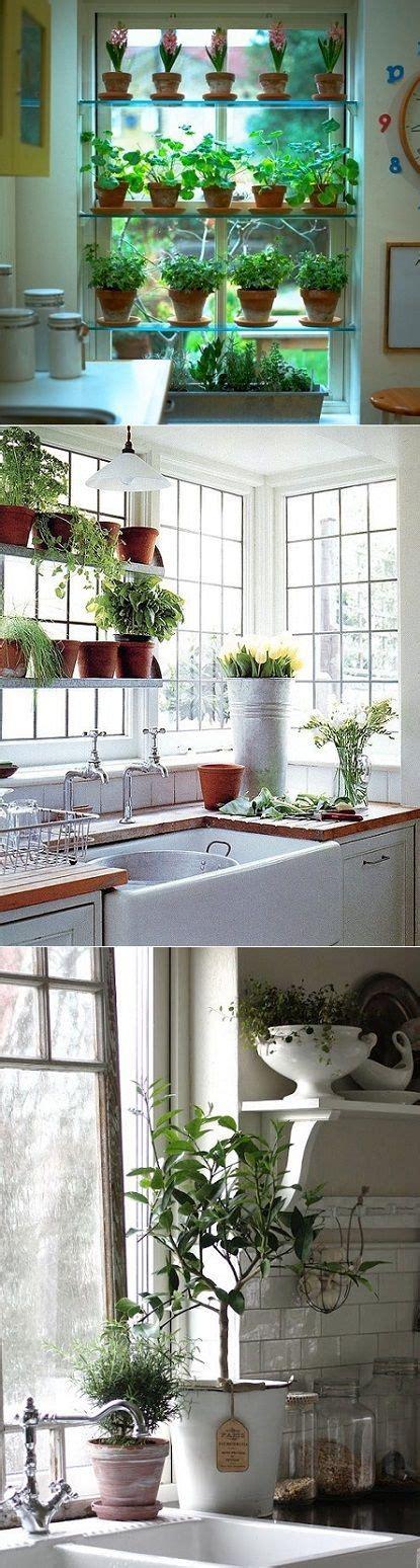 Kitchen Window Herb Garden by Winter Blues Remedy Gardens In Out