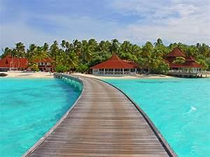 Forum Croisiere Ocean Indien : croisi re oc an indien 2018 seychelles r union maldives promocroisiere ~ Medecine-chirurgie-esthetiques.com Avis de Voitures