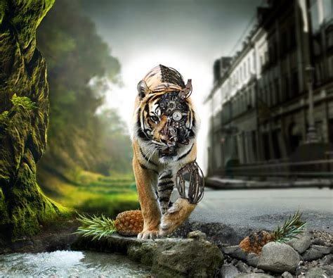 Animated Wallpaper For Tablet - animated tiger wallpaper wallpapersafari